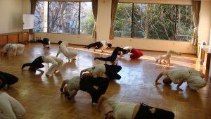 capoeira ! 始めました!!